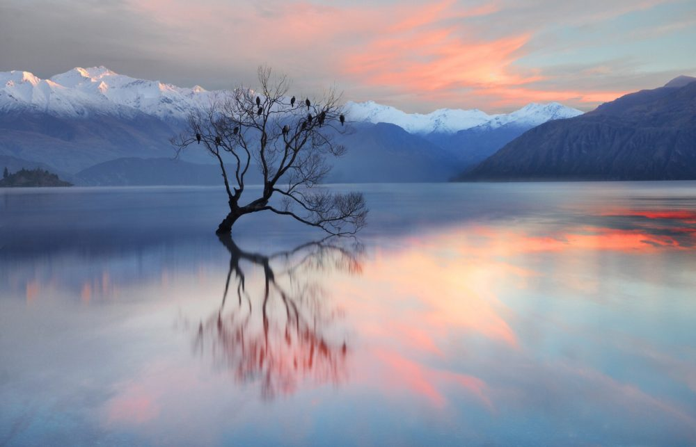 pink-clouds-at-wanaka